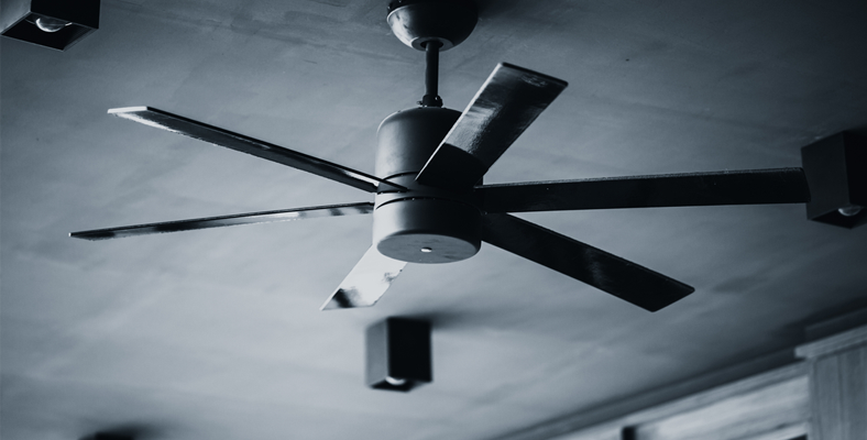 Best Ceiling Fans 10 Top Models 19