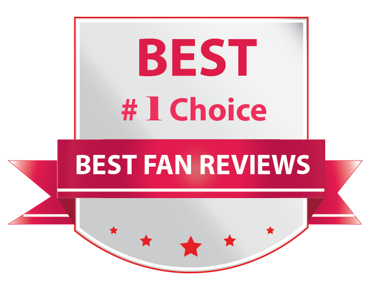 Best Fan Reviews